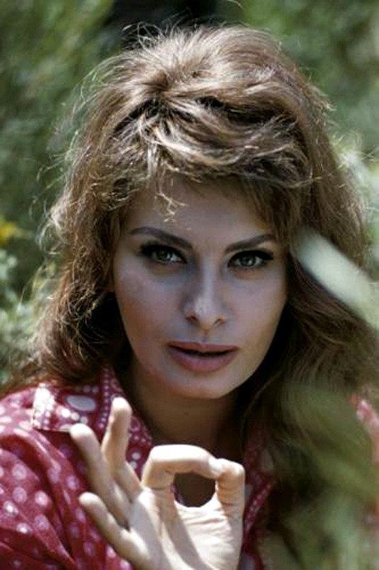 Sophia Loren by Willy Rizzo 1967