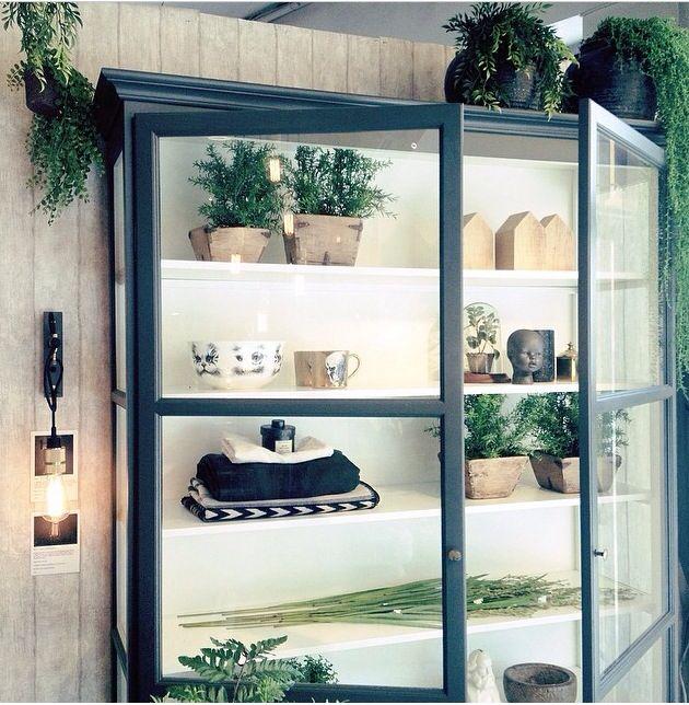 Pflanzen sind eine tolle Idee für die Lindebjerg Design Vitrinen