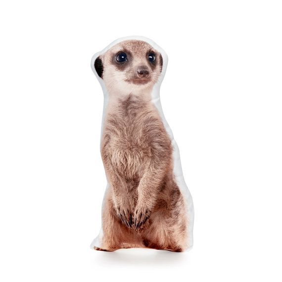 Meerkat Pillow Meerkat Cushion Meerkat Meerkat Decor Funny