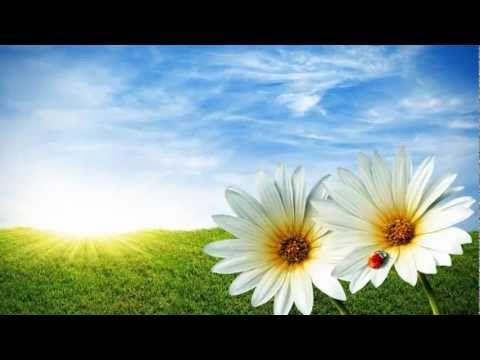 Cliff Richard - Summer Holiday