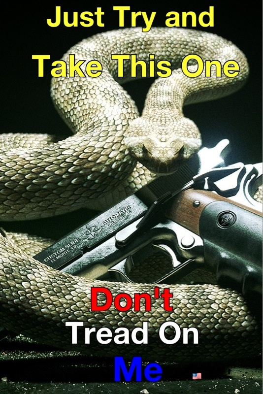 17 Best Images About Don T Tread On Me On Pinterest New