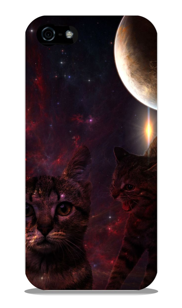 Cats and Moon Case