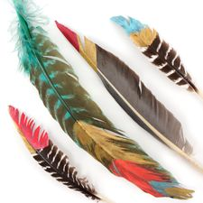 Painting Feathers : Working with Feathers : Tips and Techniques from The Feather Place. #thefeatherplace #workingwithfeathers #feathers Visit our DIY Arts & Crafts Gallery or Shop Feathers: www.featherplace.com/idea-gallery