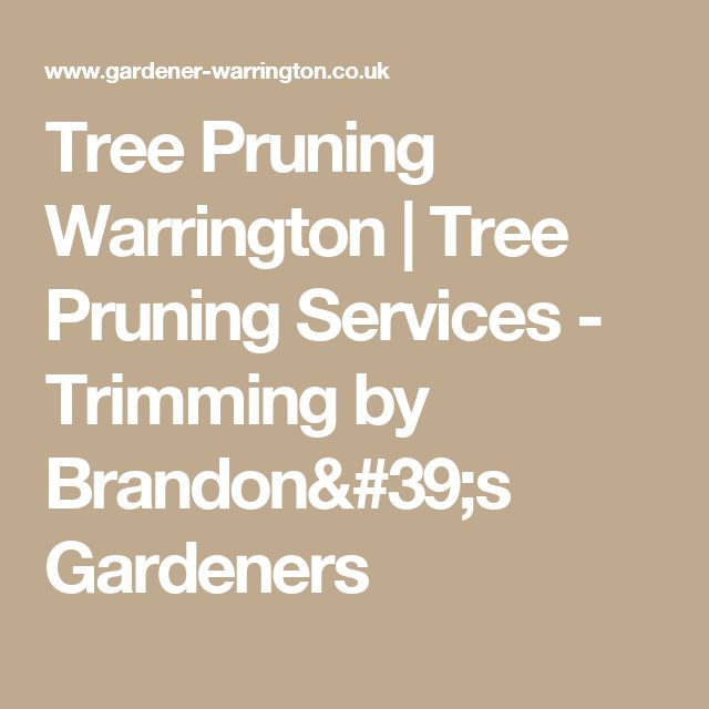 Tree Pruning Warrington | Tree Pruning Services - Trimming by Brandon's Gardeners