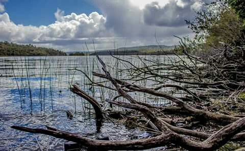 lago yaldad