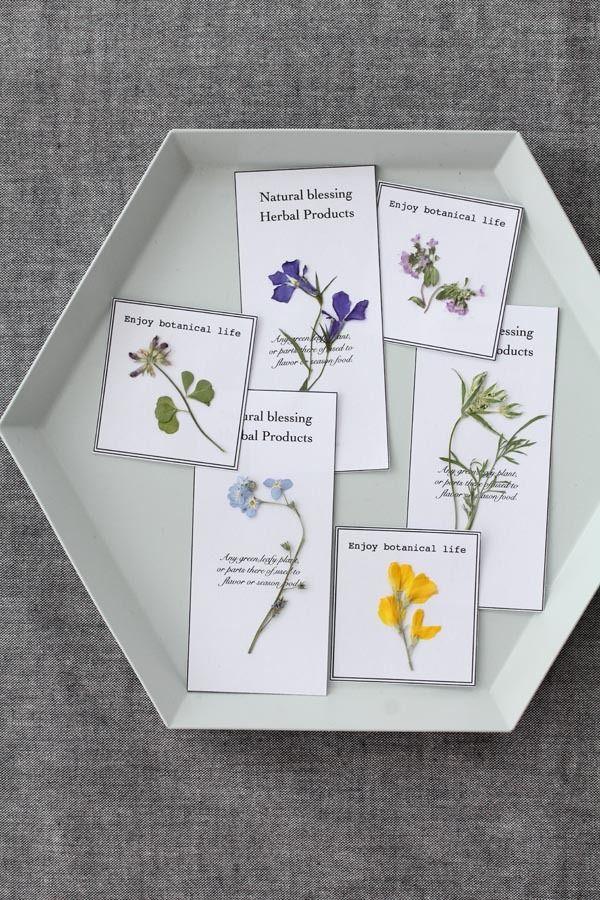 お教室を開きたいかたへ☆強みはかけ算でいきましょう! の画像|美的な押し花 カリグラフィー 花生活