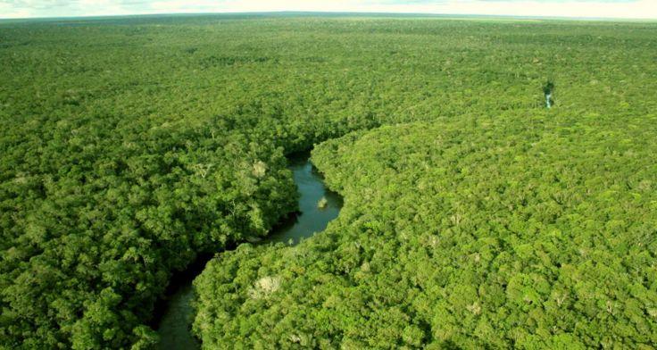 | Resex Tapajós-Arapiuns: Modelo de vida sustentável na floresta | 27.12.2016 | Ao completar seus 18 anos de vida,  a Reserva Extrativista (Resex) Tapajós-Arapiuns, localizada nos municípios de Santarém e Aveiro,  celebra o fato de ser uma das áreas verdes mais preservadas do Pará, estado que, no período de 1988 a 2016,  acumula a maior área de desmatamento da Amazônia legal.