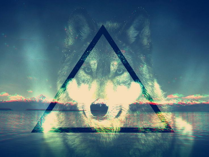 Backgrounds For Hipster Wolf Background