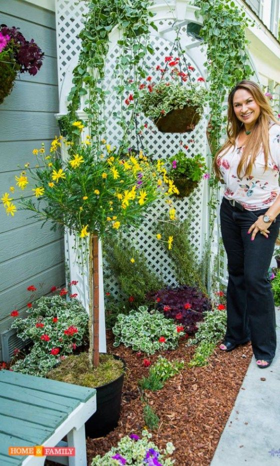 shirley-bovshow-narrow-garden-bed-makeover-with-arbor-hallmark-channel-home-and-family-show