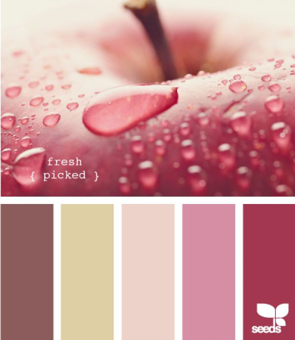 kleuren palet design seeds fresh picked