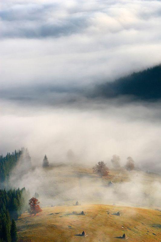 Фотография осінь у тумані / Pyvovar Pavlo / photographers.com.ua