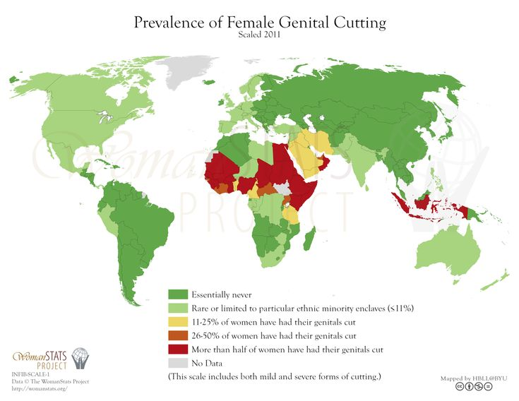 female genital mutilation thesis This paper reflects about an anthropological perspective, namely cultural relativism on female genital mutilation and its implications for human rights it disc.