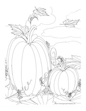 This Thanksgiving coloring page features two pumpkins in a pumpkin patch. Free to download and print