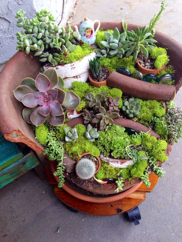 My.broken pot with succulents: Pots Gardens, Gardens Ideas, Beautiful Fairies, Broken Pots Fairies Gardens 19, Gardens Can, Minis Gardens, Pots Turning, Miniatures Gardens,  Flowerpot
