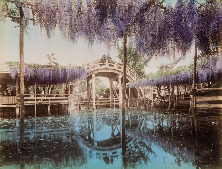 A tokiói Kameido-szentélyl