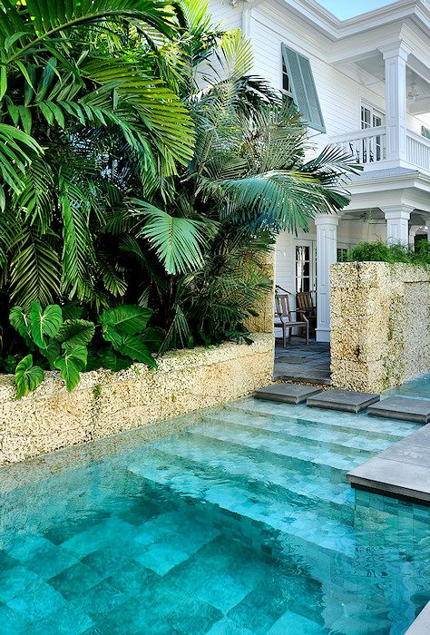 tropical backyard