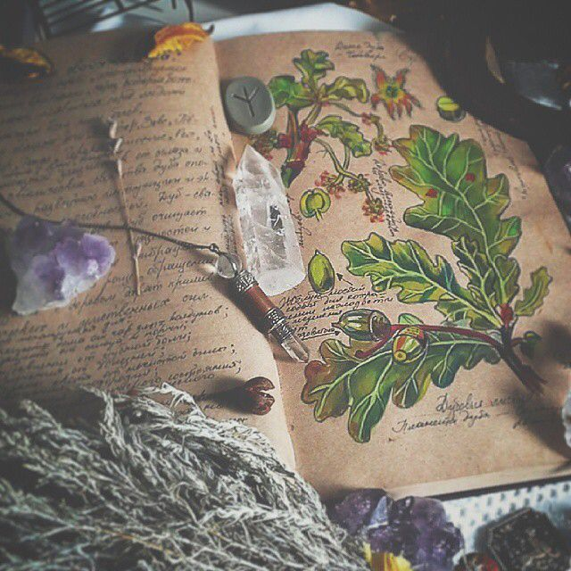 Elemental Earth Witch Collection | The Elements | Witchcraft Tools | Pagan | Herbs | Book of Shadows Illustrated | Crystals | Runes | Divination | Wiccan Photography | Sacred Space | Pagan Alter Supplies - Awesome blog!!