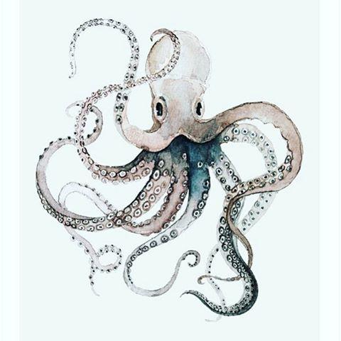 Image result for 3D octopus murals tutorials