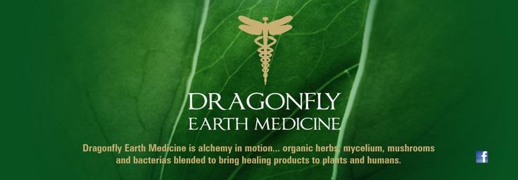 Herb information: Dragonfly Earth Medicine