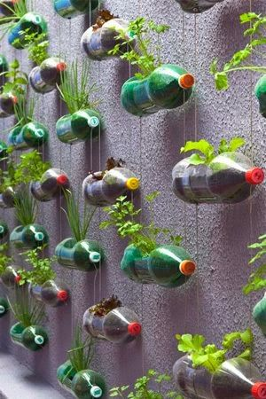 The Best DIY and Decor Place For You: This is urban garden
