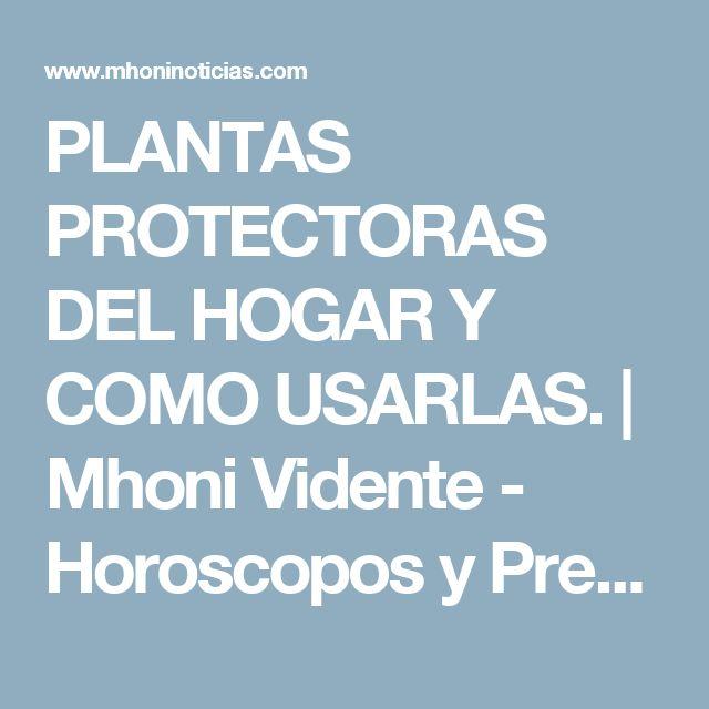 PLANTAS PROTECTORAS DEL HOGAR Y COMO USARLAS.                        Mhoni Vidente - Horoscopos y Predicciones