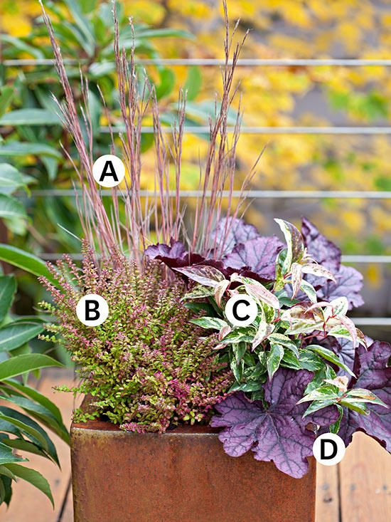 33 Fall Container Garden Ideas with Planting Plans outdoor flower