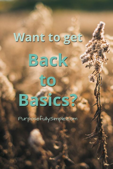 'Back to Basics' Living Bundle: A Review: