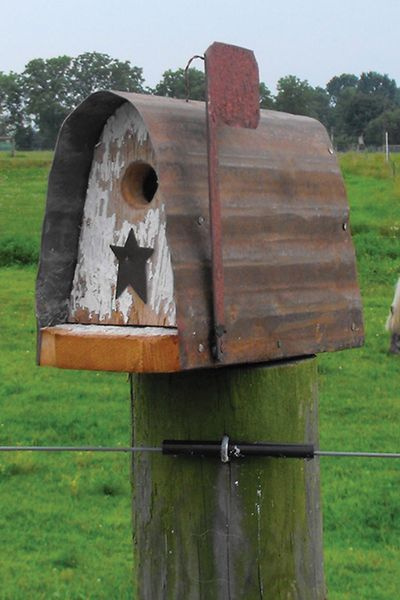 Rustic Looking Bird Houses | CountryPrimitive Birdhouses