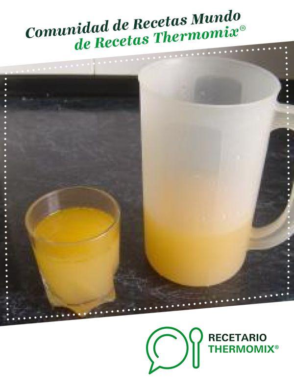 Caldo depurativo ( Para Dietas) por Chuchi. La receta de Thermomix<sup>®</sup> se encuentra en la categoría Dietas trituradas en www.recetario.es, de Thermomix<sup>®</sup>