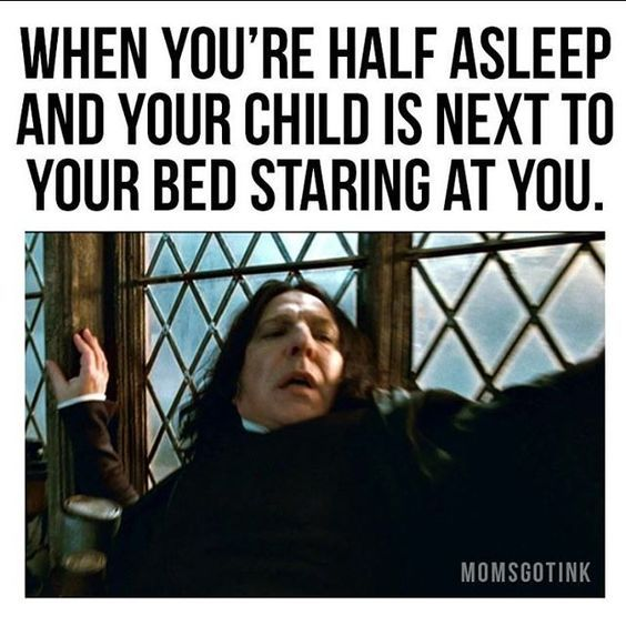 OMG.....that would scare the holy sh*t outta me. | Funny ... |Half Asleep Funny Memes