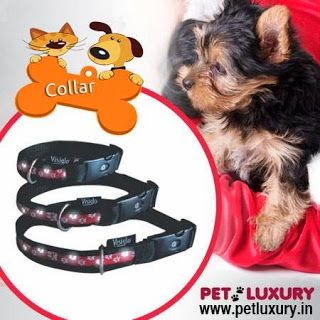 There are a number of the stores online that are offering a large variety of pet products and supplies of high quality at the best price.