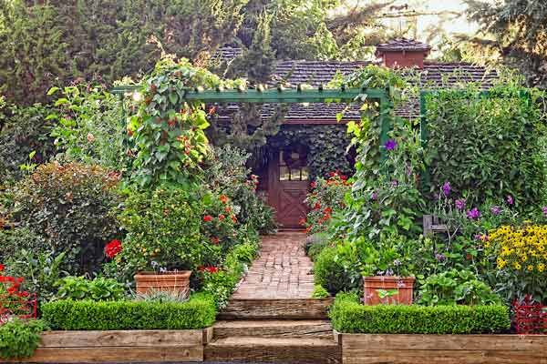 Add Edibles To Your Garden For Foodu2014and Beauty Colorful Vegetables And  Fruit Bearing Plants Can Enhance The Look Of Your Flower Beds, Not Merely  Provide A ...