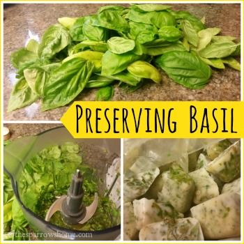Freezing basil to add to recipes year round is so easy! All you need is basil, olive oil and ice cube trays. It's my favorite way to preserve summer.