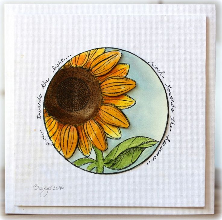grow toward the light sunflower card by Birgit