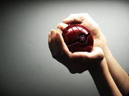 Kuvahaun tulos haulle pokemon ball hand