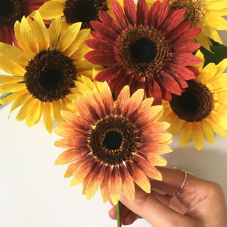 Paper Sunflowers by A Petal Unfolds
