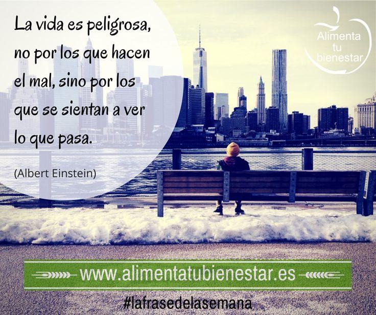 La vida es peligrosa, no por los que hacen el mal, sino por los que se sientan a ver lo que pasa. (Albert Einstein) #lafrasedelasemana