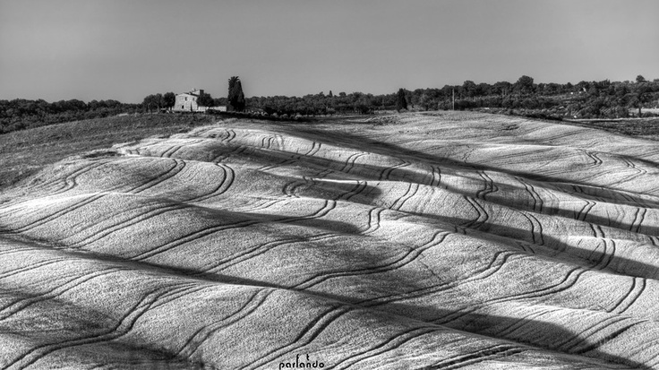 Val d'Orcia in black & white