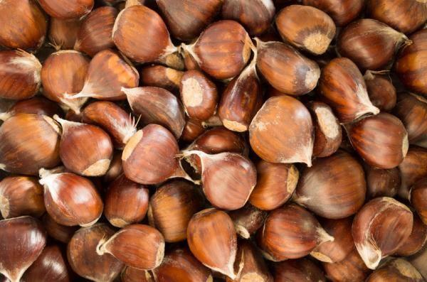 Rezept: Esskastanien (Maronen) einfach zubereiten | Frag Mutti