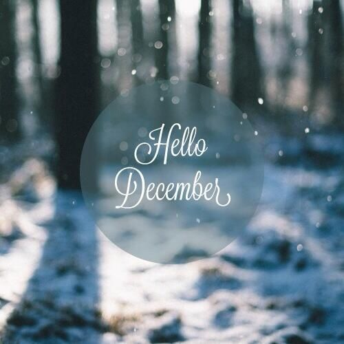 Things to know about me -My birthdays in december and i absoluetly love it! i love winter and the holidays so it really is my favorite time of the year