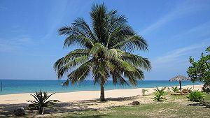 Sibu Island travel guide - Wikitravel