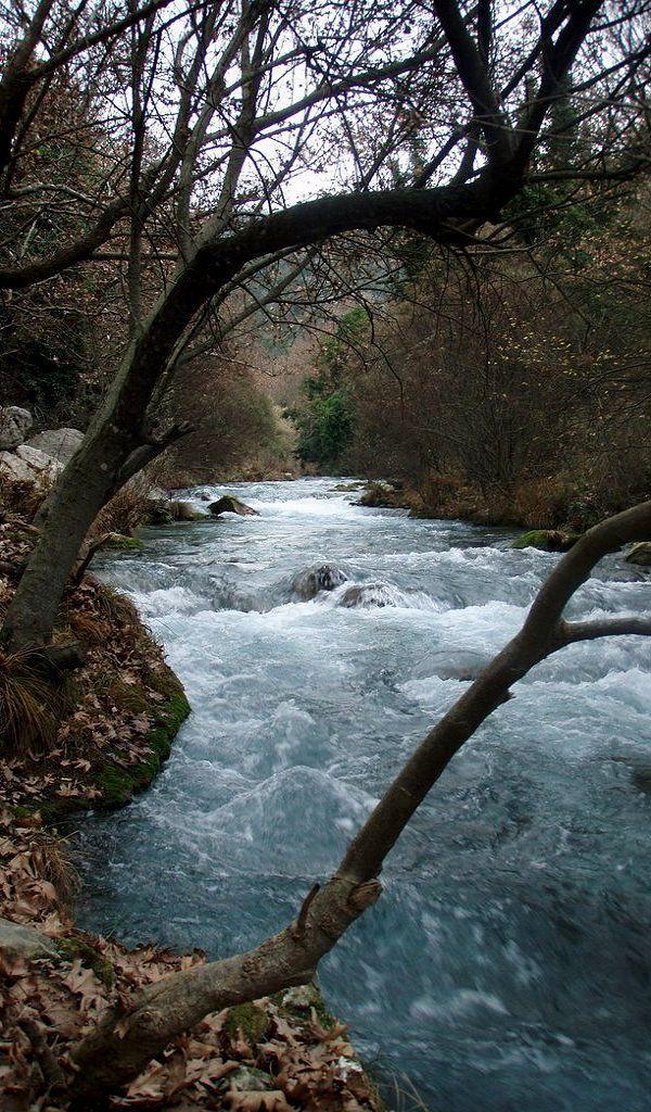 Lousios river ~ Gortina, Arcadia, Greece   by GelySkourti