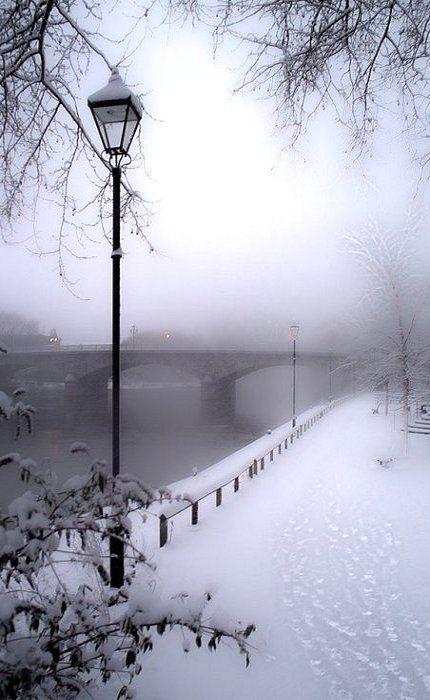 Paris winter wonderland.