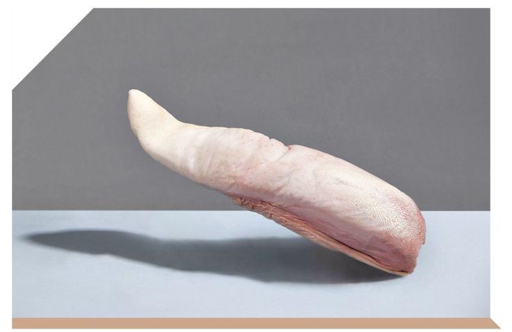 DE LA LANGUE Elle se camoufle derrière le Lucullus de Valenciennes ou la hure pistachée, fait sa pudique avec une sauce piquante : vous vous léchez les babines ? Vous êtes prêt pour le plus beau baiser de la gastronomie. Photographe : Florent Tanet