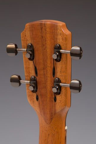 "Anyone seen ""stealth"" tuners on a guitar? - The Acoustic Guitar Forum"