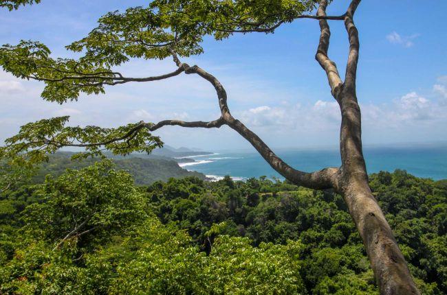 Coastal view montezuma and Playa Grande Sun trails canopy tour Montezuma, Costa Rica