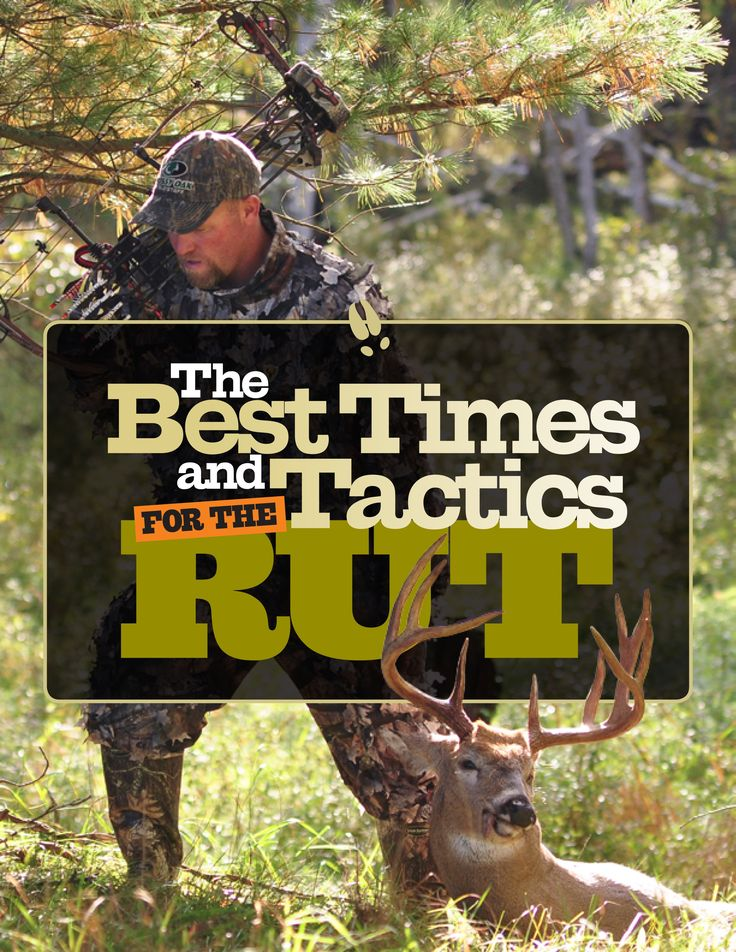 The Best Times and Tactics for the Rut