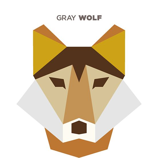 illustrations shapes simple animals animal geometric polygon drew shape inspiration abstract fox amazing illustration thedesigninspiration flat clip vector wolves wolf