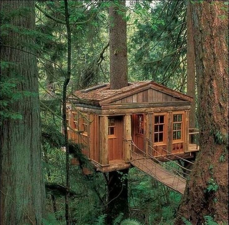 It's almost too elegant to be called a tree house isn't it, especially