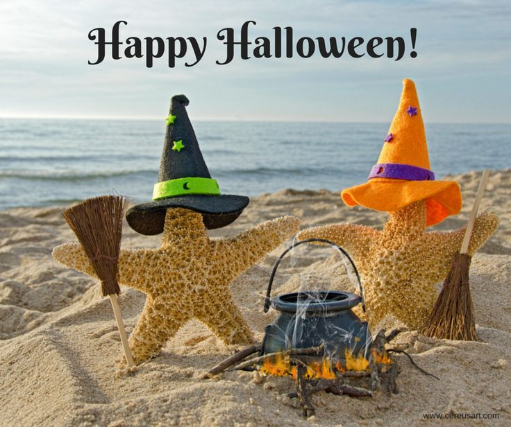 17 Best Images About Beachy Halloween On Pinterest